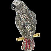 Joan Rivers African Grey Brooch