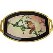 Vintage Hand Painted Cockatoo Parrot Tray from Germany