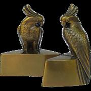Vintage Cockatoo Bookends