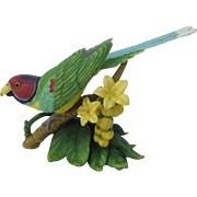 Lenox Plum-headed Parakeet Figurine