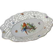 Vintage Reticulated Macaw Amazon Parrot Bowl from Bavaria