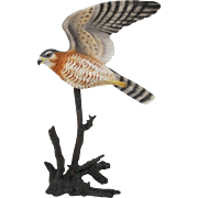 Royal Worcester Sharp-shinned Hawk Figurine