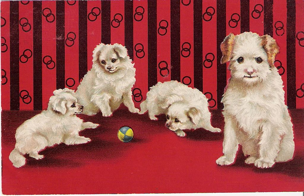"""""""Rivalry"""" - Mother Watching her Puppies"""