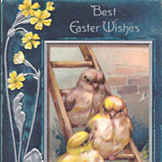 Best Easter Wishes - Baby Chicks