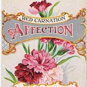 """""""Affection"""" - Red Carnation"""" - Valentine - Postcard"""