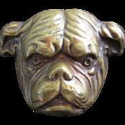 Brass Bulldog Pin Vintage