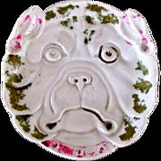 C.1850 Nut Dish Bulldog Or Pug Dog