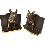 Outstanding Bradley Hubbard French Bulldog Bookends Rare