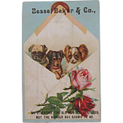 Antique Trade Card With Dogs