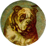 WWI 1918 Australia Bulldog Pin Back Celluloid