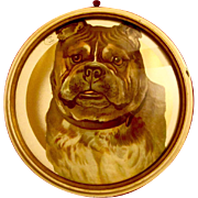 Large German Embossed Diecut Bulldog Framed Antique