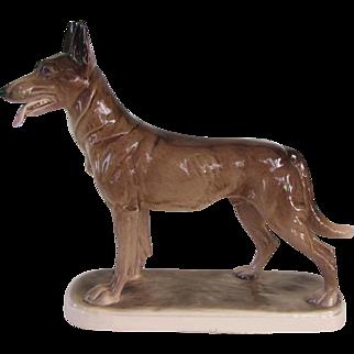 Rare Hertwig Belgian Malinois Dog Vintage