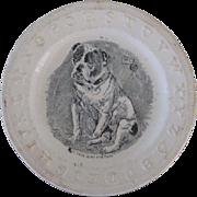 C.1850 Antique ABC Children's Plate With Bulldog