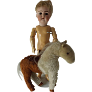 Small Steiff Pony To Display with a Doll