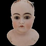 Large Kestner Bisque Shoulder Head, Size 13