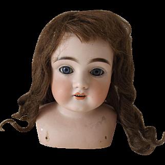 Size 15 Human Hair Doll Wig