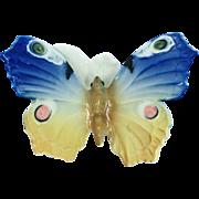 Karl Ens Porcelain Butterfly Moth Figurine