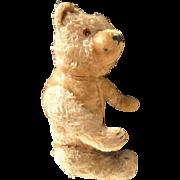 Not Available - On Hold for Erika - Hermann Antique Mohair Teddy Bear