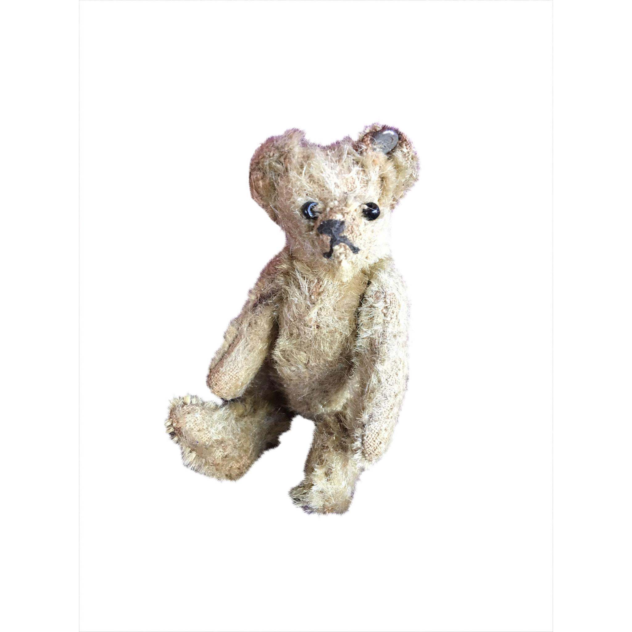 Adorable Miniature Steiff Teddy Bear with Button