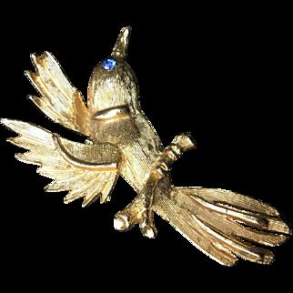 Humming Bird Pin