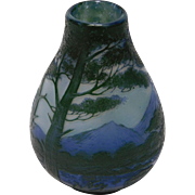 De Vez French Cameo Glass