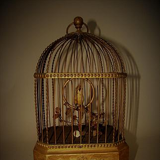 Antique Karl Griesbaum Singing Bird in Cage Automaton Music Box Works Great