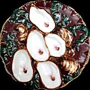 Rare and Gorgeous Mahogany Haviland Turkey Oyster Plate