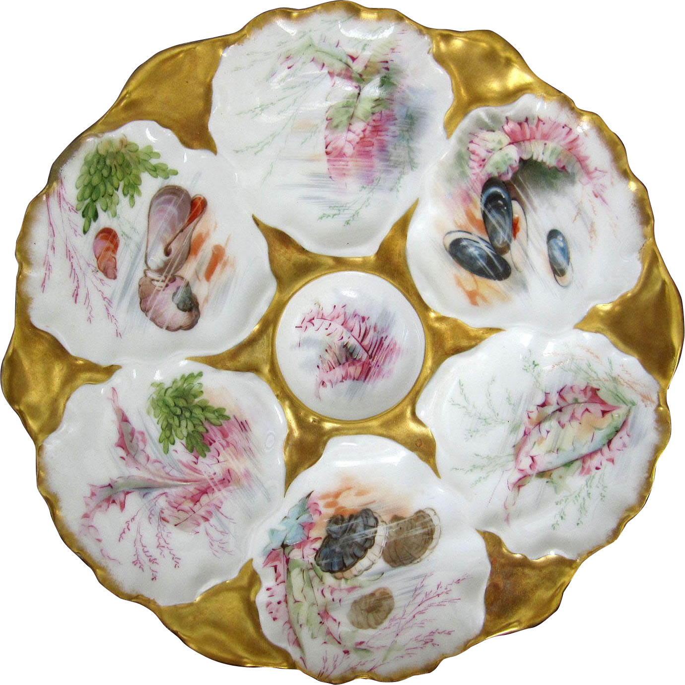 Antique Oyster Plate ~ Seashells and Fauna!  for Bailey, Banks & Biddle