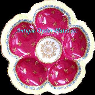 Antique Oyster Plate ~  Rare Saleman's Sample ~ Haviland ~ Limoges