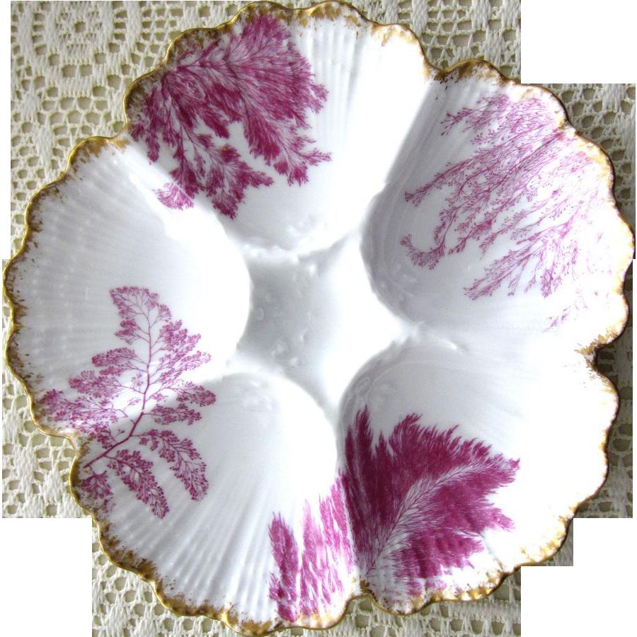 Antique Oyster Plate ~ Intense Fuchsia