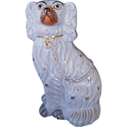 Antique Staffordshire Spaniel Dog #3