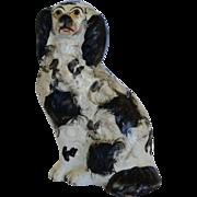 Antique Staffordshire Spaniel Dog ~ C1860