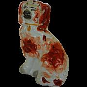Antique Miniature Staffordshire Spaniel Dog #2