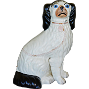 C1860 Antique Blue Eyed Disraeli Staffordshire Dog
