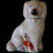 C1850 Rare Antique Poodle/Spaniel Staffordshire Dog