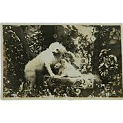 Antique AZO RPPC Dog & Pups Postcard