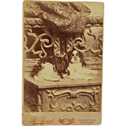 Antique Cabinet Dog Photograph ~ Lovely Spaniel