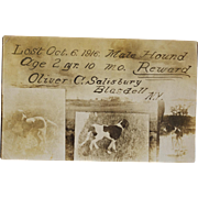 "Antique Dog Postcard ~ ""Lost Hound"""