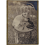 Antique CDV Photograph ~ Playful Cat With Duck
