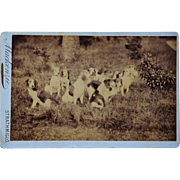 "Antique Cabinet Dog Photograph ~ ""Release The Hounds"""