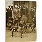 WW1 Photograph ~ Major E.H. Richardson And His Red Cross Bloodhound Dogs