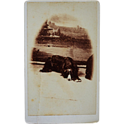 Antique CDV Dog Photograph ~ Resting Hound