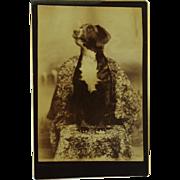 Antique Cabinet Photograph ~ Attentive Dog
