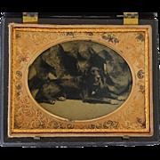 Antique Tintype Photograph In Quarter Plate Thermoplastic Case ~ Recumbent Dog