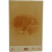 Antique Cabinet Photograph ~ Relaxing Dog