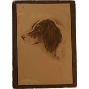 Card Mounted Photograph Of Dog's Profile Drawing
