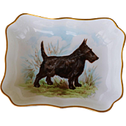 Scottish Terrier Dog Royal Crown Derby Porcelain Pin Dish #2