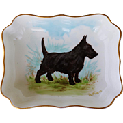 Scottish Terrier Dog Royal Crown Derby Porcelain Pin Dish #1