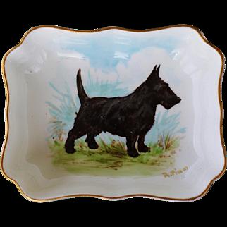 Scottish Terrier Dog Royal Crown Derby Porcelain Pin Dish #1