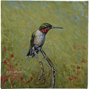 Male Hummingbird Oil Painting